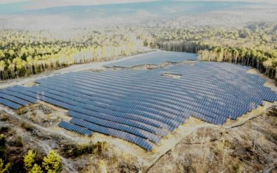 New 30ac Shutesbury Solar Field near the Paul C Jones Working Forest